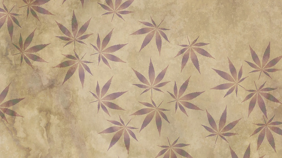 Cannabis: A Short American History